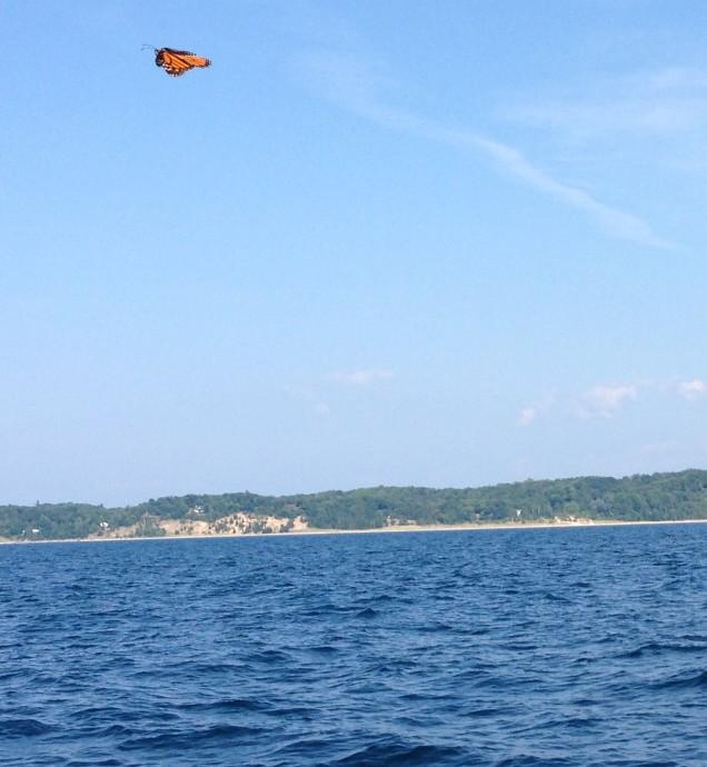 monarch.lake.2